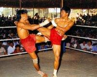 Boxe Birmane